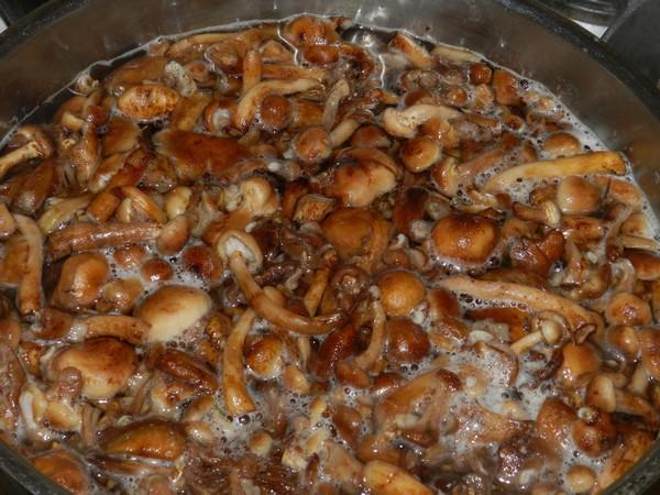Вкусно готовим грибы: маринованные опята, пара рецепта
