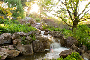 Водопад всаду пейзажного стиля