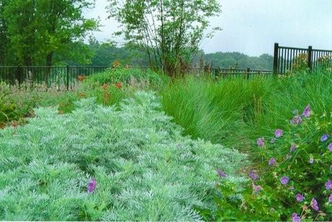 Естественные сады
