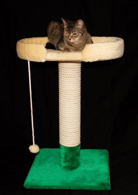 Когтеточка слежанкой для  кошек