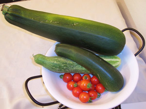 Как вырастить кабачок ипатиссоны