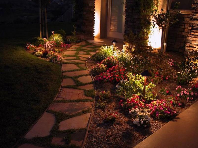 Подсветка растений всаду