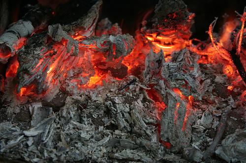 Собираемся напикник: советы повыбору мангала, топлива ипосуды