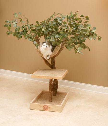 Кошачьи домики-деревья