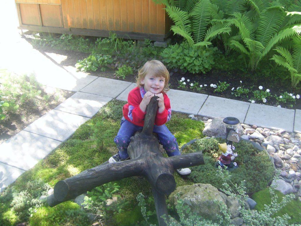 Декор участка своими руками изподручных средств: зеленолиственный мох