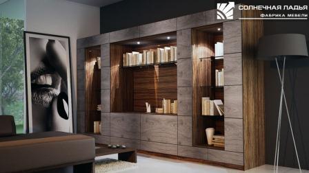 Шкаф-перегородка— нестандартное намерение жилищных проблем