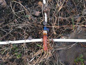 Система мурава огорода про ленивых