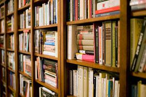 Мебель чтобы домашней библиотеки