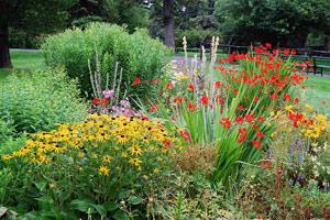 Способы зонирования сада: расщепка иобъединение