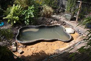 Химические средства для очистки  воды вискусственных водоемах