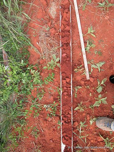 Предпосевная углеподготовка почвы