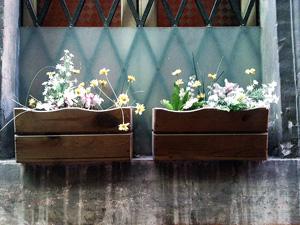 Контейнеры для  цветов: делаем «висячие сады» своими руками