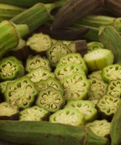 Выращивание экзотических растений надачном участке. Бамия