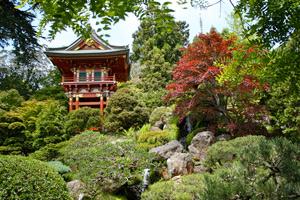 Сад вяпонском стиле: основные декоративные элементы